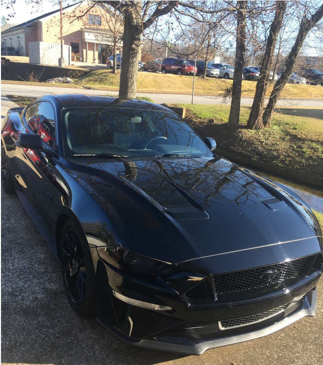 2018 Ford Mustang Coupe 2D GT 5.0L V8